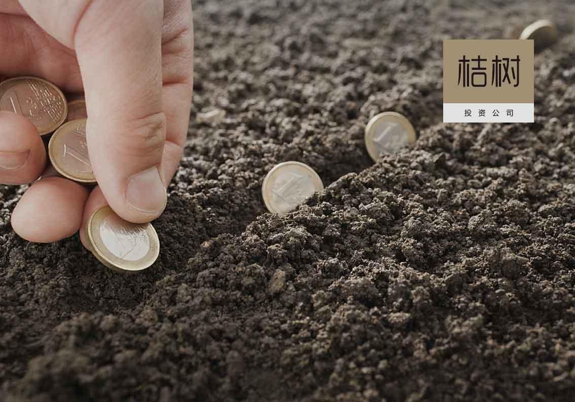 桔树-投资管理公司千亿国际开户